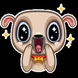 Zac The Pug